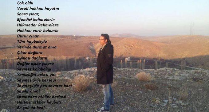 Yorgun Çınar ( Muhammed Burkucu Şiiri)