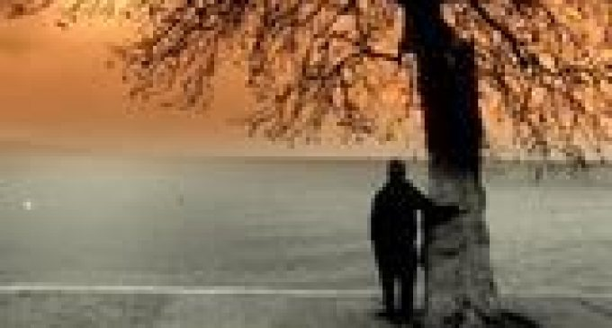Son Bakış – Sezen Aksu